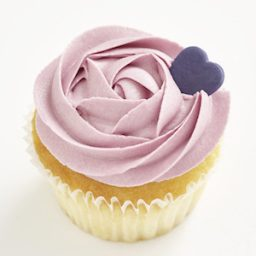 Blueberry Classic Size Cupcake 300x300