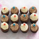 chocolate petite cupcakes