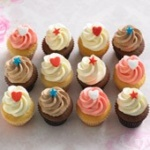 assorted flavours petite cupcake 12 pack