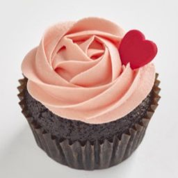 Chocolate Strawberry Classic size cupcake