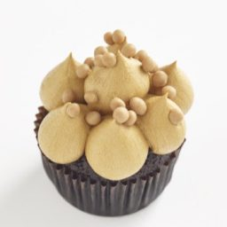 Salted Caramel Classic size cupcake