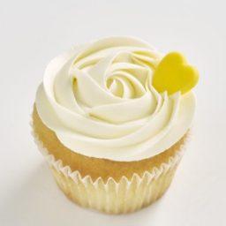 Vanilla Classic size cupcake