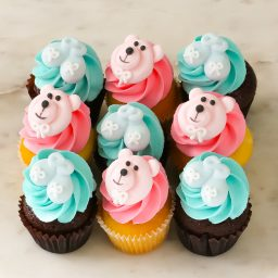 baby shower boy and girl mini cupcakes